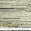 thin-sierra-14r-panel